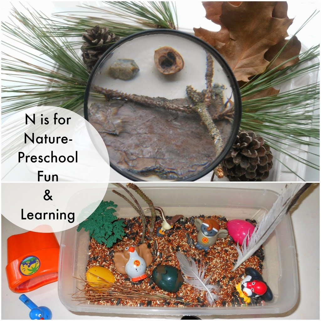 N is for nature, Letter N activities, Preschool and Toddler learning, purposeful play, sensory play, birds, nature table,science, www.naturalbeachliving.com