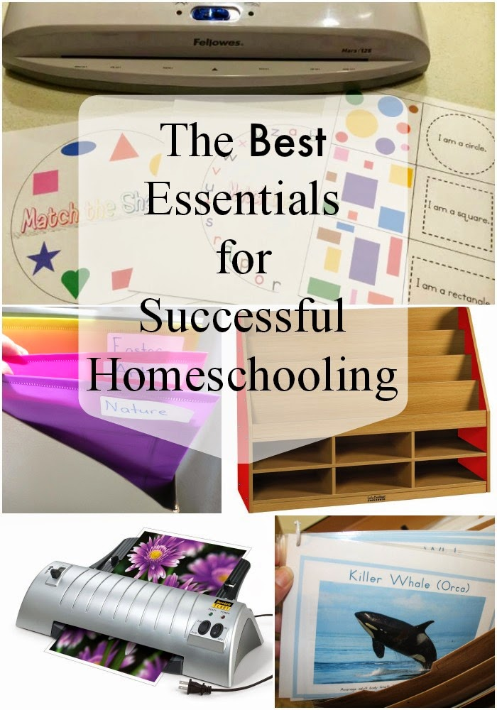 The Best Essentials for Homeschooling Success