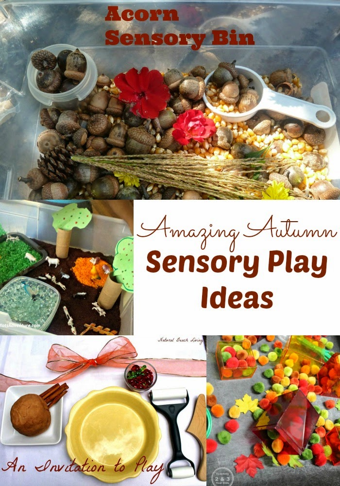 Amazing Autumn Sensory Play Ideas