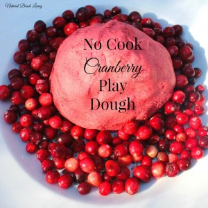 cranberry play dough