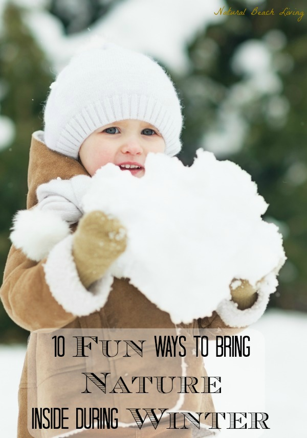 10 Fun Ways to Bring Nature Inside During Winter
