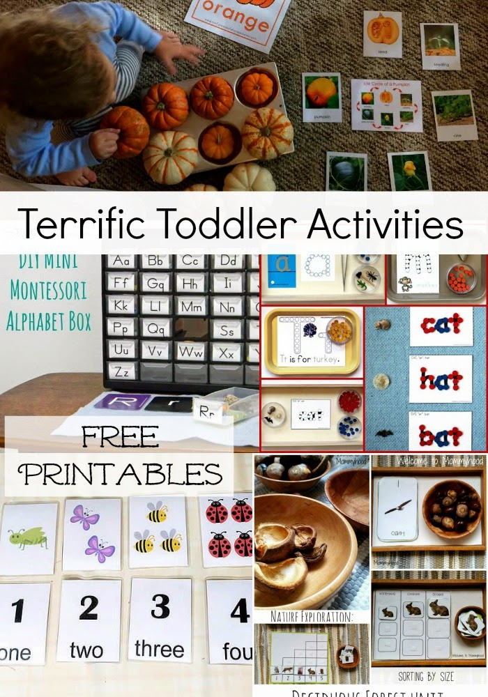 Terrific Toddler Activities