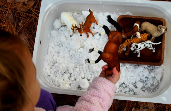 Homemade Snow Dough, A Snowy Day Book Activities, Animal Track Matching, FIAR, Toddler, Preschool, Sensory Play www.naturalbeachliving.com