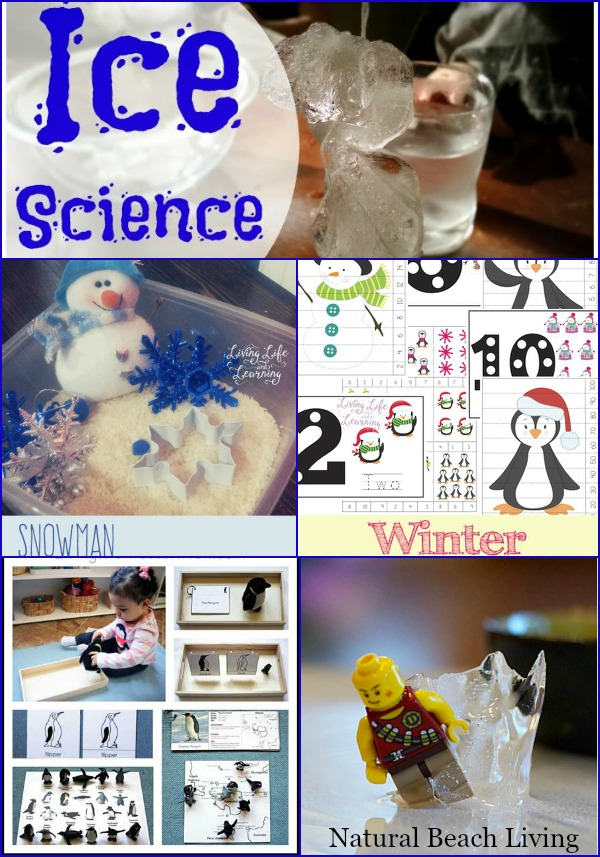 Winter Activities, Science, Printables, Penguins, Sensory Play and more www.naturalbeachliving.com