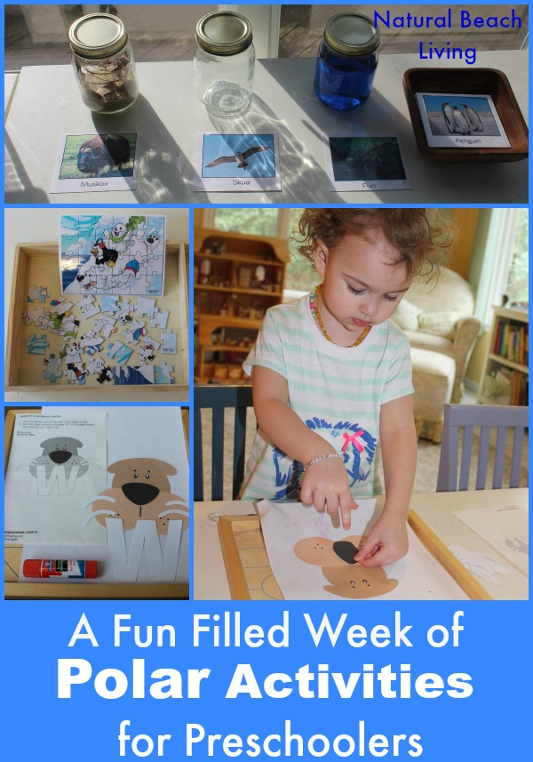 Arctic & Antarctica Activities for preschoolers, toddlers, kindergarten, Unit study, themes, polar animals, Montessori, Science, www.naturalbeachliving.com