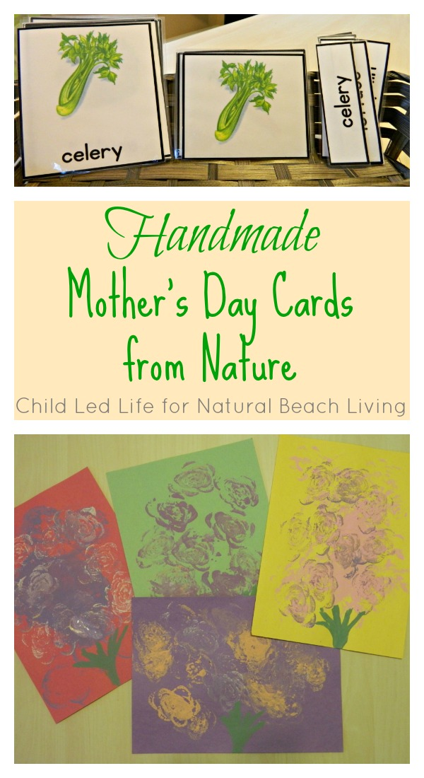 Handmade Mother's Day Cards from Nature (Guest Post)