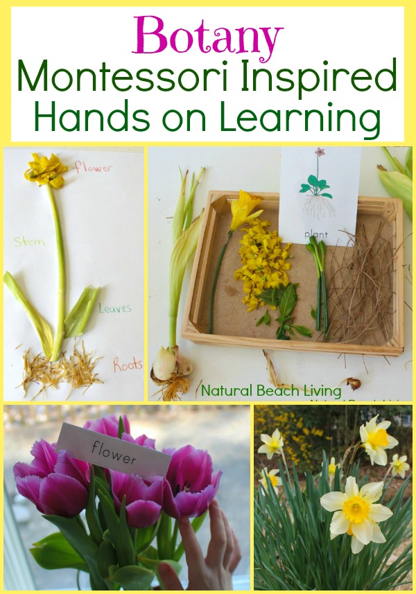 Plant and Gardening with Kids. Planning your garden to indoor learning activities, crafts and even lovely garden sheds that are sure to delight.