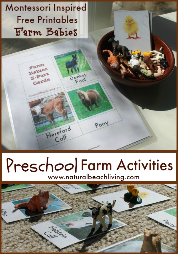 Check out these Farm Printable Activities for kids. They're a great resource to learn all about farms and farm animals. Add these to a Farm Preschool Theme to have Free Farm Themed Coloring Pages and Farm Printables for Preschool and Kindergarten. Farm Activities for Kids are great for spring and summer activities