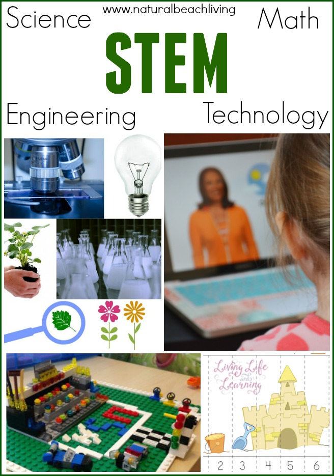 STEM activities for kids can be fun and important for a child's future, science, technology, engineering, math activities for kids, Natural Beach Living