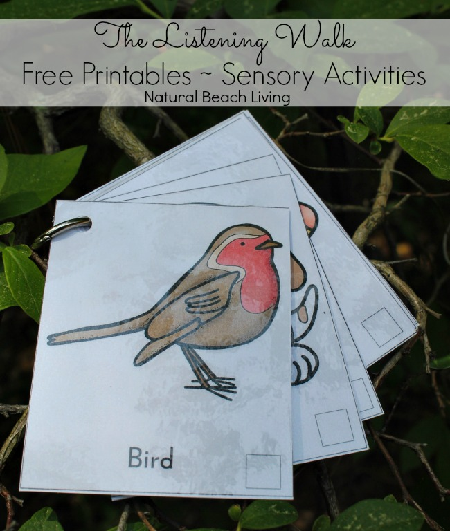 Easy Montessori Sensory Activities with Free Printables, 12 months of Montessori learning, Montessori Sensorial Activities, Montessori Printables, Montessori Sensorial Extensions, nature walk ideas for kids, Sound activities for kids, Maria Montessori, Montessori preschool, Nature ideas for kids, #Montessori #Montessoriactivities #Natureactivities
