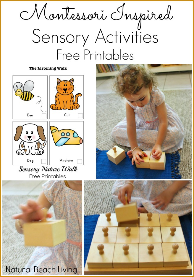 12 months of Montessori learning, Sensorial, Montessori sensory activities, Free Printables, nature listening walk, Sound activities, Maria Montessori