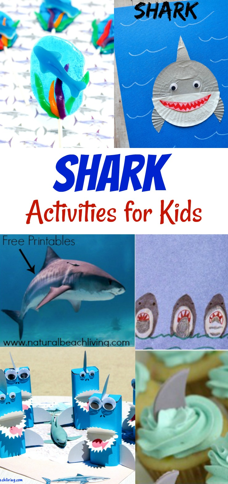 Shark Activities for Kids – Free Shark Printables