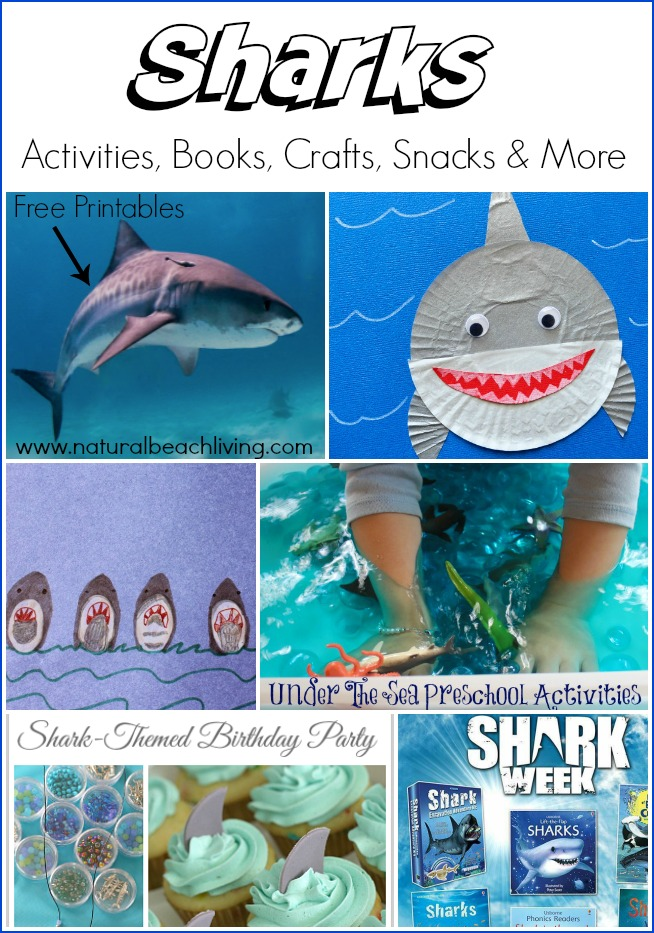 Awesome Shark Activities, Shark Books, Shark crafts, Shark Party Ideas, Ocean sensory play and more. Shark Week activities, Sharks Free Printables