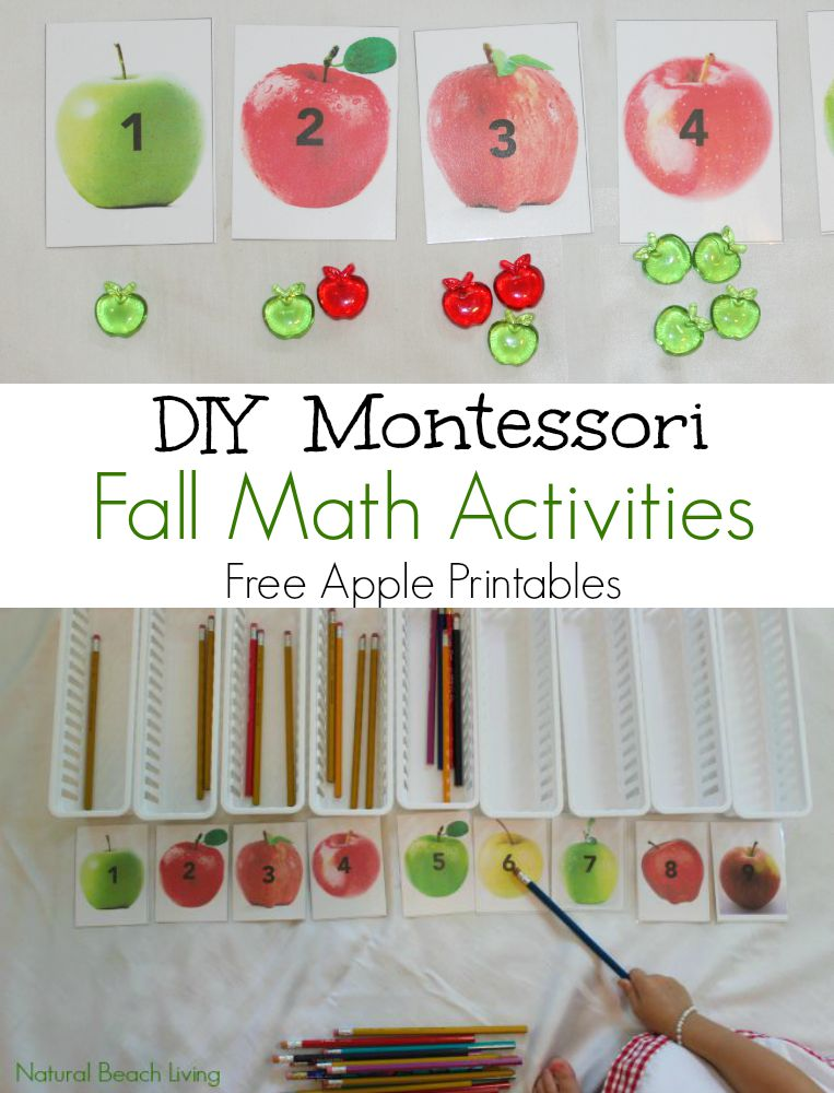 These Apple Count and Clip Cards are the Perfect Fall Busy Bag for preschoolers, Free Printables, Fall Activities, Fall Themes for preschool and more.