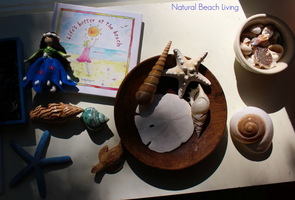 The Best Summer Science, Sensory, Nature table full of exciting items to discover. Summer Sensory Bin, Shark Activities, Natural Learning, Shells, Waldorf,