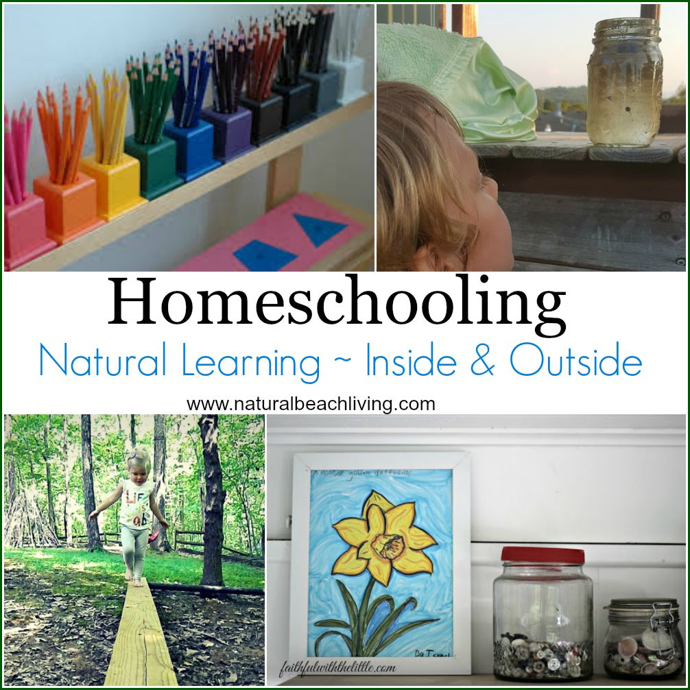 Natural learning, homeschool rooms, bringing nature inside and outside, unschooling, Outdoor Montessori Activities, a lovely way to live and learn through nature. Homeschooling Natural Learning, Natural Learning Books, Establishing a Natural Homeschool Rhythm