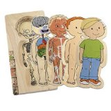 Hape Anatomy puzzle