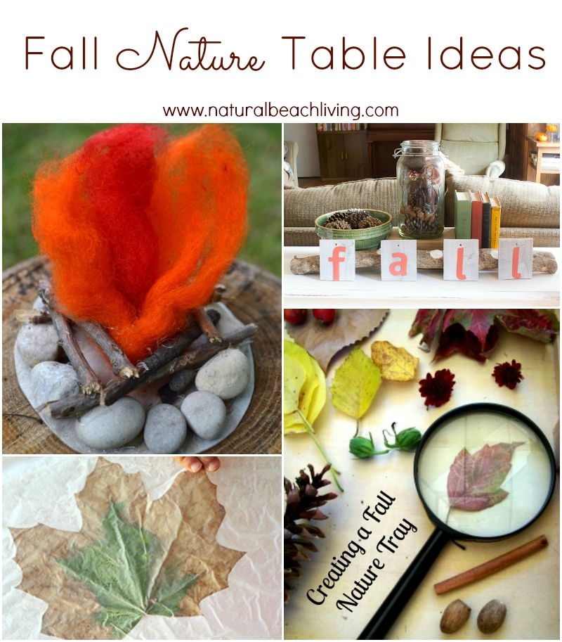 Fabulous Fall Nature Table Ideas and Inspiration, natural materials, Waldorf, Montessori, Reggio, Also a great Sensory & Science Exploration. Gorgeous!!