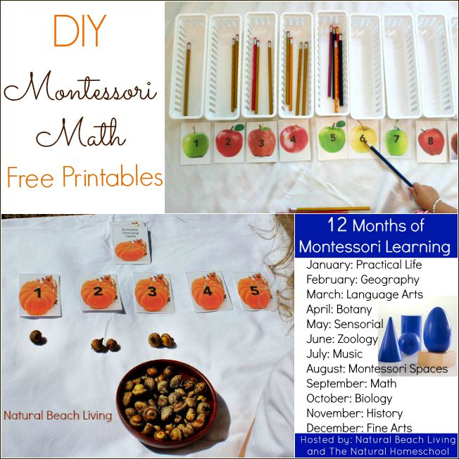 Montessori Math with Pumpkins and Acorns (Free Printables)