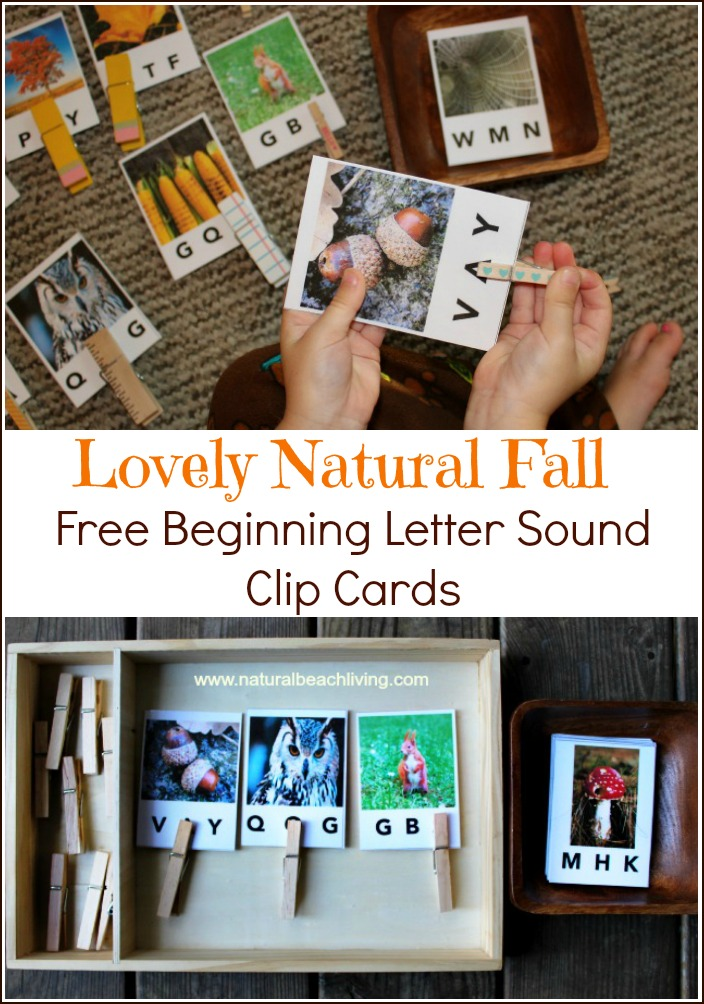 Fall Beginning Letter Sound Alphabet Clip Cards (Free Printables)