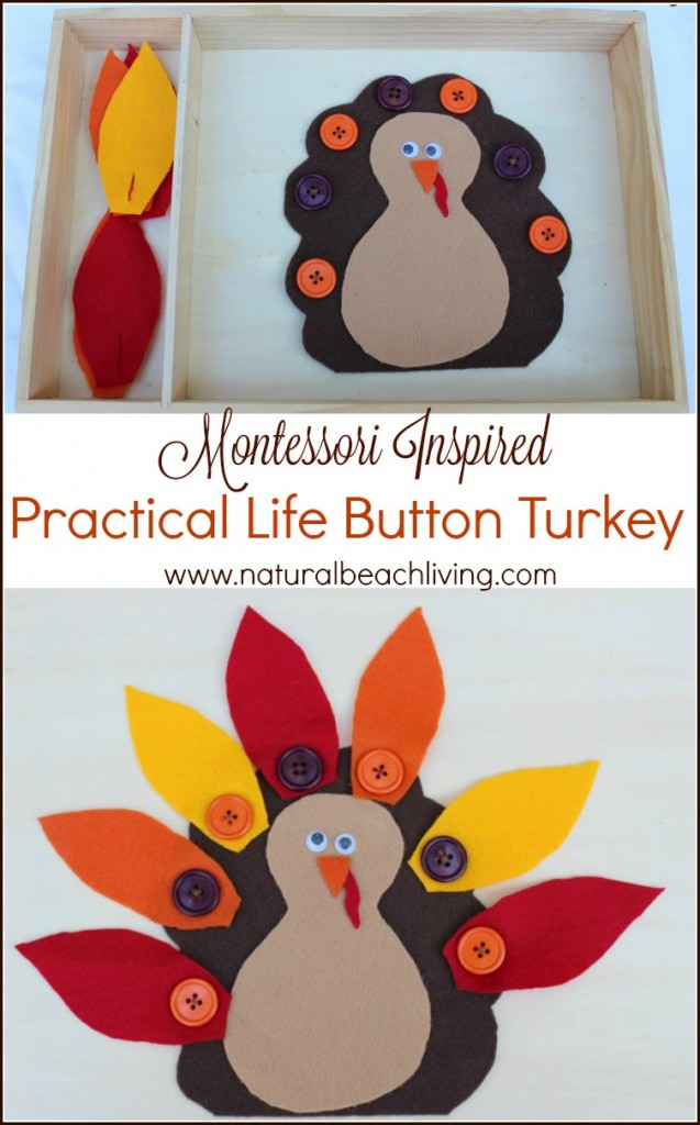 Montessori Practical life button turkey, So many great Thanksgiving ideas, Thanksgiving Activities, Crafts, Snacks, Scented Sensory play, Free Thankful Printables and coloring pages, Science & More