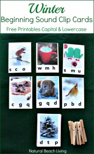 Winter Beginning Sound Clip Cards Free Printables ...