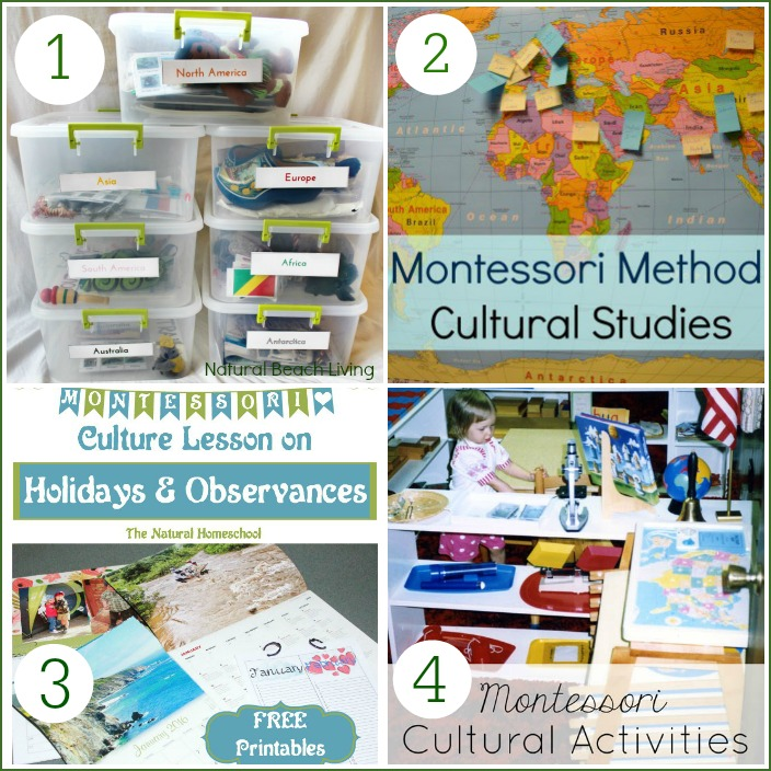 Tons of Wonderful Montessori Culture Ideas and Printables, Continent Boxes, Continent Studies, Free Printables, DIY and Multicultural Books and More