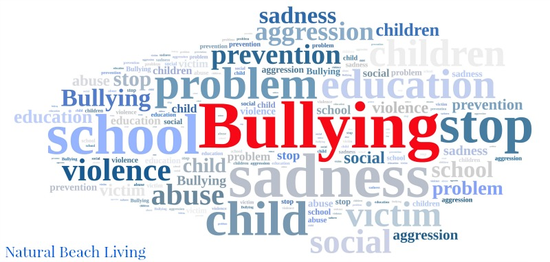 Is Your Kid a Bully, A real story of A bully on the basketball court, Dealing with a bully and being bullied