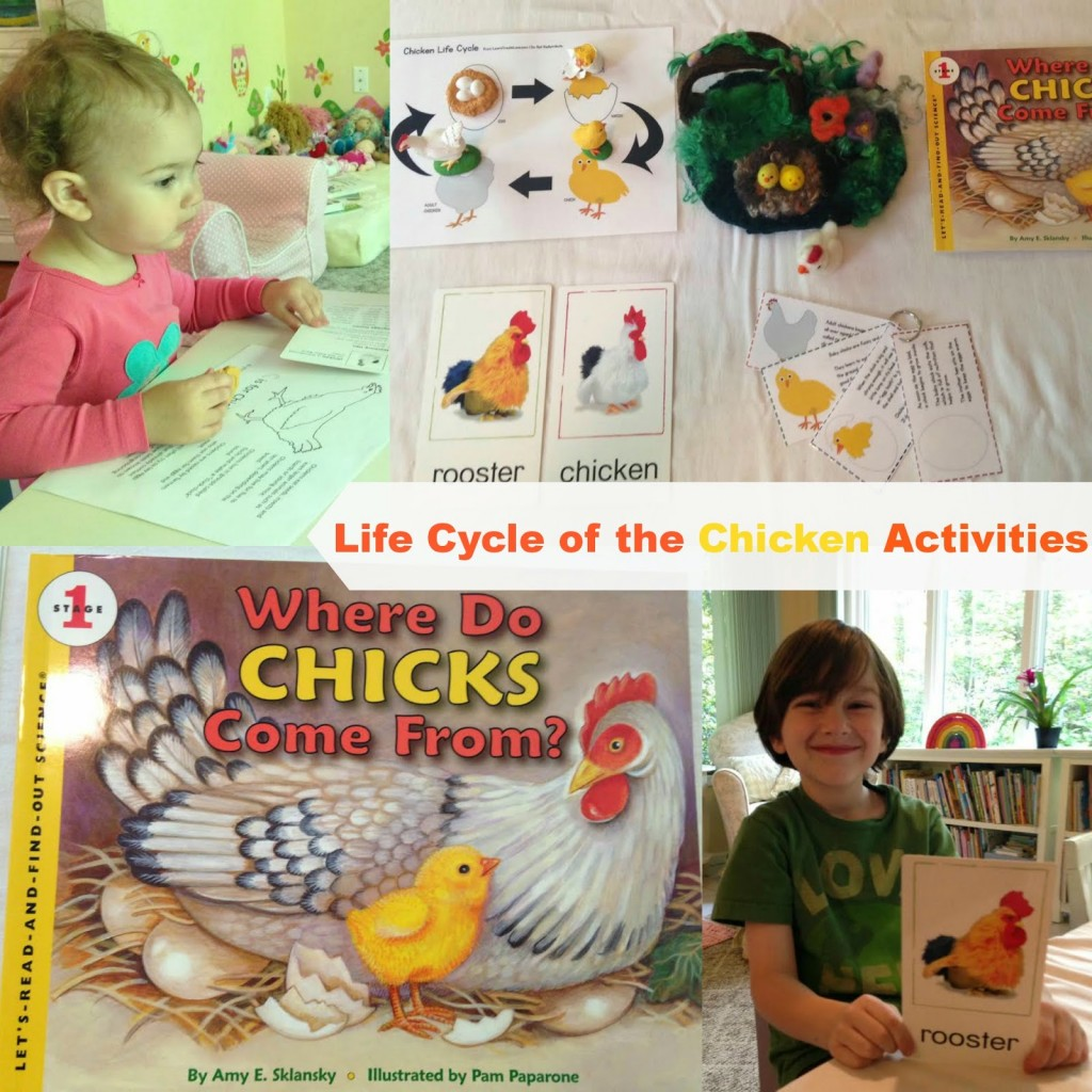 Fun Montessori Spring Activities, Montessori Math, Alphabet, Montessori Trays, and lots of Animal and Life Cycle Ideas.