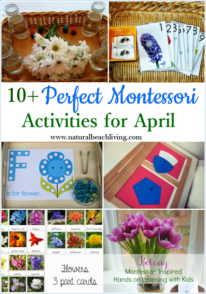 10+ Perfect Montessori April Preschool Activities, Botany, Flower Science, Free Printables, Mapping, Life Cycles, Hands on learning monthly themes
