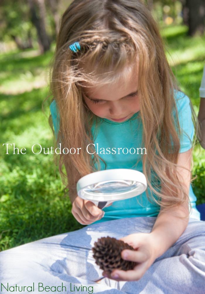Outdoor Classroom Ideas Natural Beach Living
