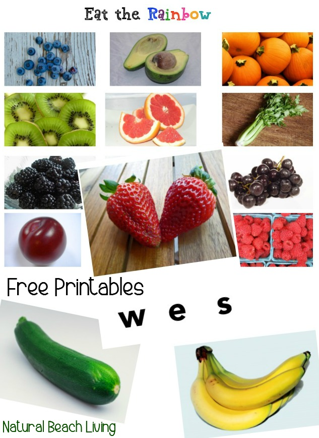 Free Printables and Kids Activities for Nutrition, Easy Healthy Family Lunch Ideas, You & your kids will love this food, Picnic ideas, toddler meals, easy on the go meals. Delicious recipe's for everyone.