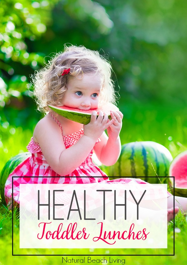 20+ Healthy Toddler and Preschool Lunch Recipes and Snack