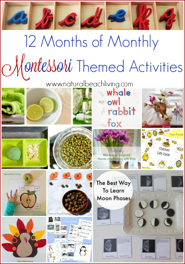 12 Months of Monthly Montessori Themed Activities, Montessori Ideas, Set-ups, Trays, Free Printables, Preschool Themed Learning Activities and so much more.