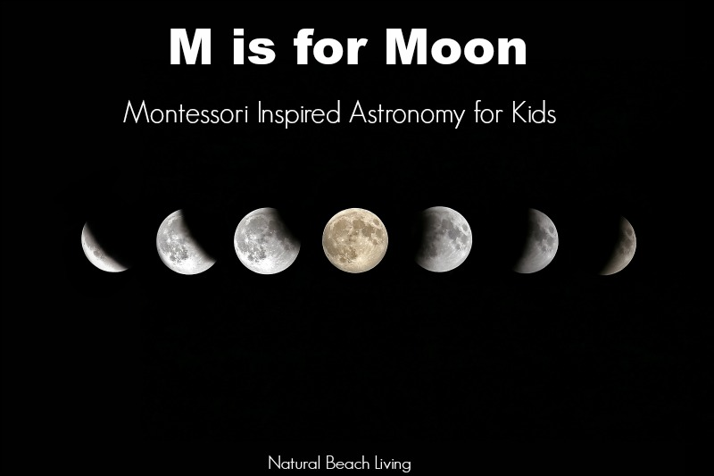 photograph regarding Moon Phases Printable called Moon Pursuits Montessori Astronomy