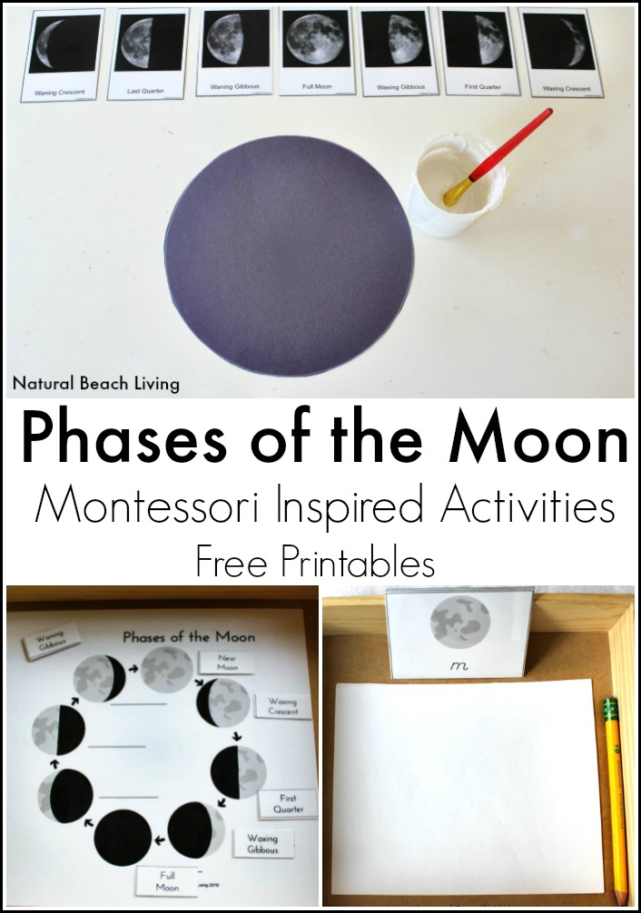 The Best Moon Activities for Kids – Montessori Inspired Astronomy (Free Printables)