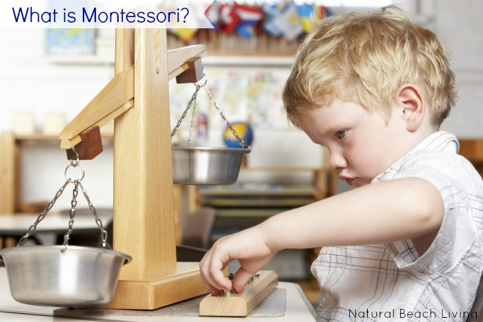 Have you ever wondered what Montessori is? Interested in learning about Maria Montessori and the Montessori Philosophy, This is Perfect for you.
