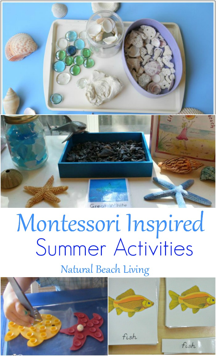 12+ Montessori Summer Activities ~ Perfect Themes for June