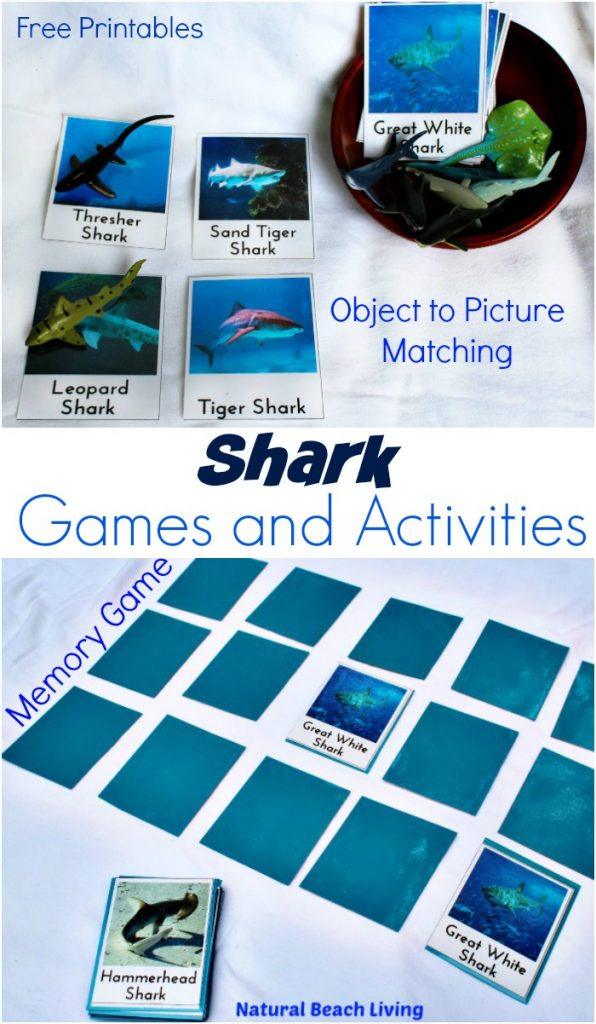 shark activities games