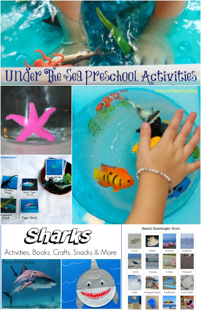 under the sea activities, 200+ of the Best Preschool Themes and Lesson Plans, Themes for Preschool and Kindergarten, Tons of Pre-K activities and printables, Perfect for weekly or monthly themed learning or unit studies, Pre K themes, Free Preschool Printables, Preschool activities, #preschool #preschoolactivities #preschoolcrafts