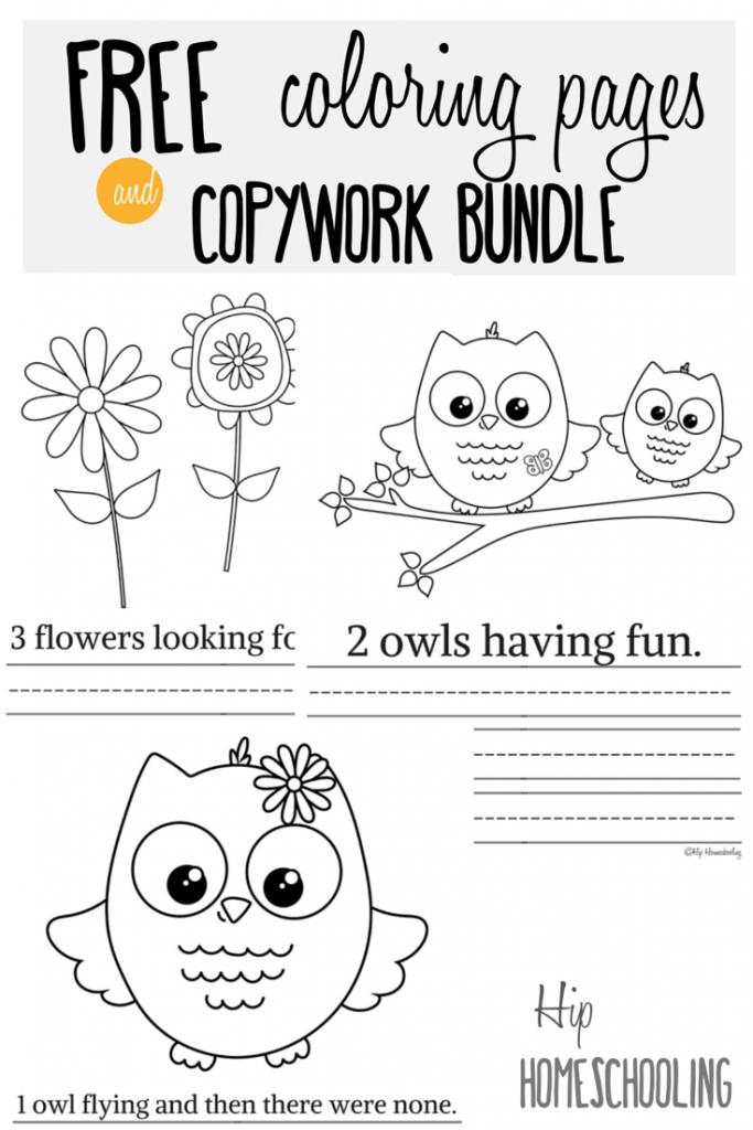 owl printables homeschool