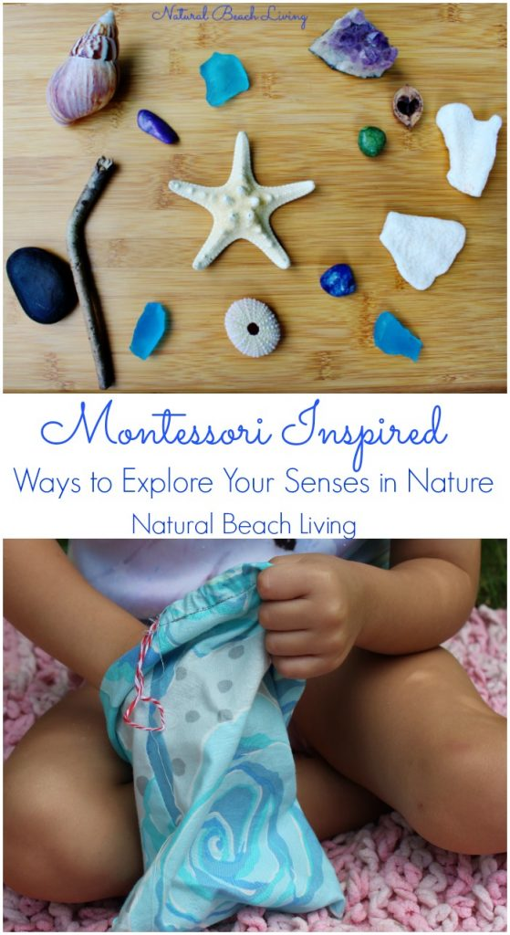 The Best Ways for Exploring Senses in Nature, 5 senses with nature walks, scavenger hunts and hands on activities. Montessori Sensory with Natural Materials and an ocean theme, A DIY Mystery Bag for Kids for Tactile Sense that is Perfect for Special needs and Sensory Processing Disorder