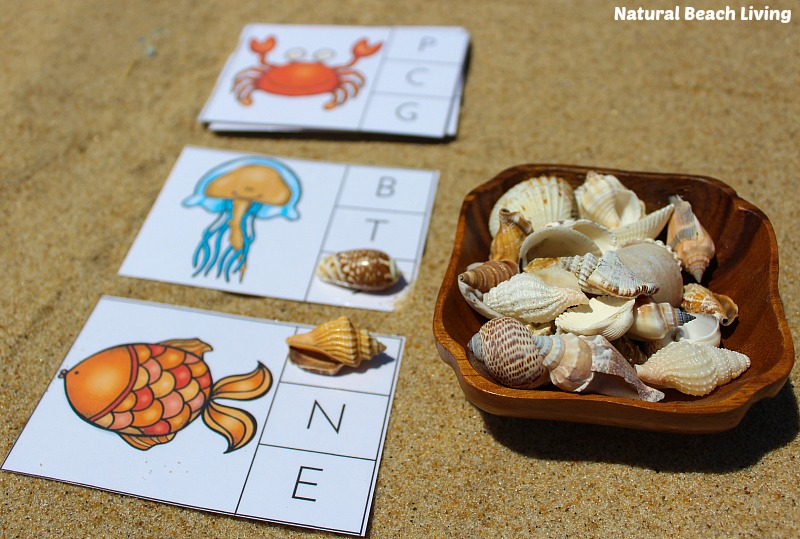 The Best Ocean Animals Preschool Activities, Free Printables, Perfect Preschool Ideas for Ocean or Under the Sea theme, I SPY Counting & Alphabet Clip Cards
