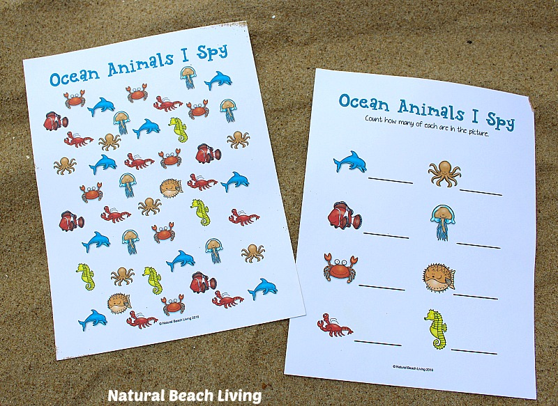 graphic relating to Free Printable Ocean Worksheets identify The Simplest Ocean Pets Preschool Pursuits and Printables