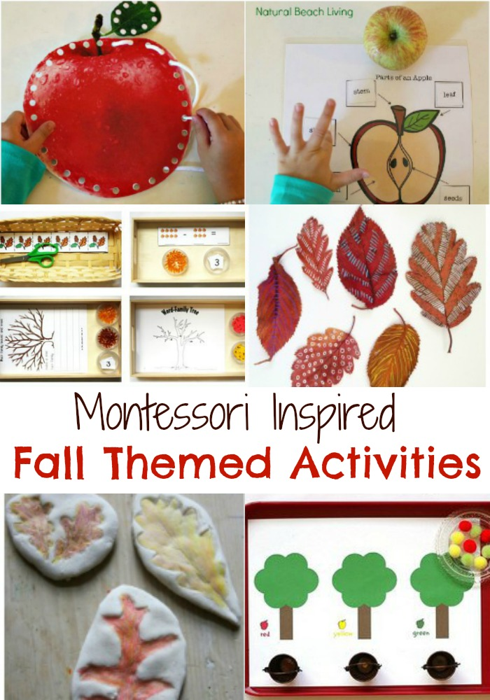 Fall Montessori Activities for Preschoolers – Montessori Themes for Fall