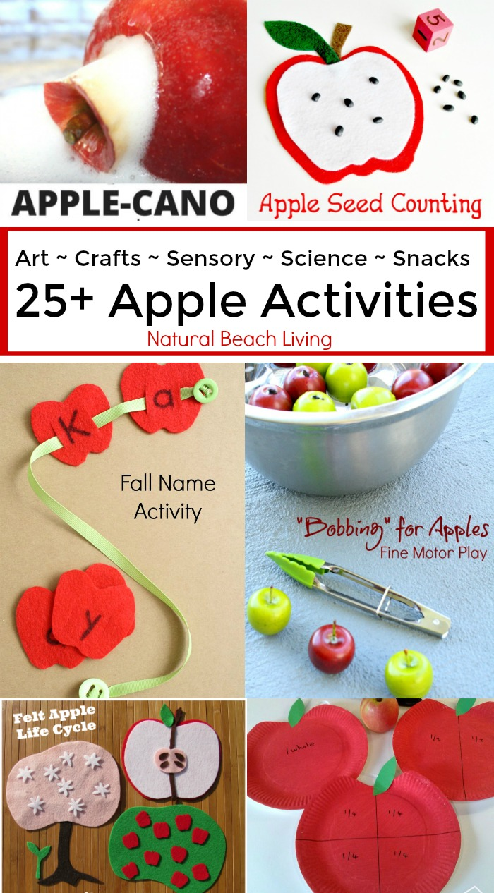 25+ Awesome Apple Activities for Kids, Sensory Play, Science, Fine Motor, Apple Snacks, Fall Art,Crafts, Books, Fiar, Perfect for any fall day or apple unit