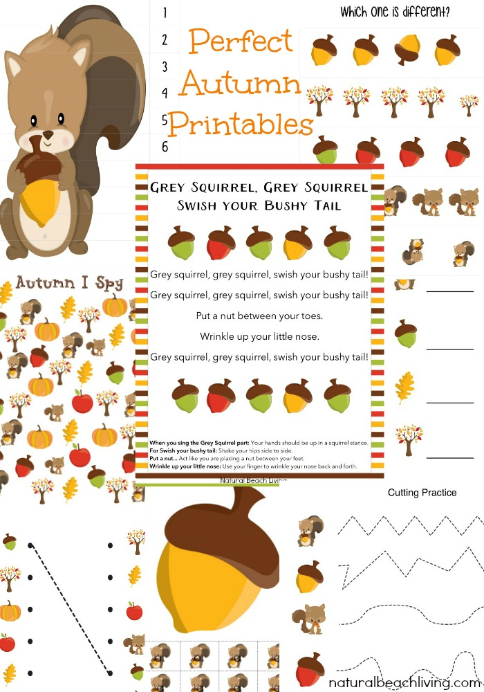 The Best Squirrel Activities for Preschool & Kindergarten, Perfect Fall Theme, Fun Fall Printables, Great squirrel lessons and activities for preschoolers