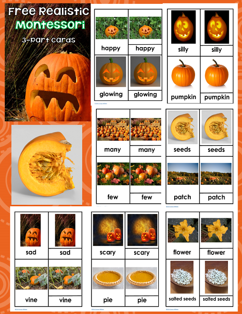 Perfect Fall Montessori Pumpkin Activities, Themed Learning Ideas, Nature Inspired, Halloween, Printables, 3 Part Cards, Crafts, Montessori Math & More