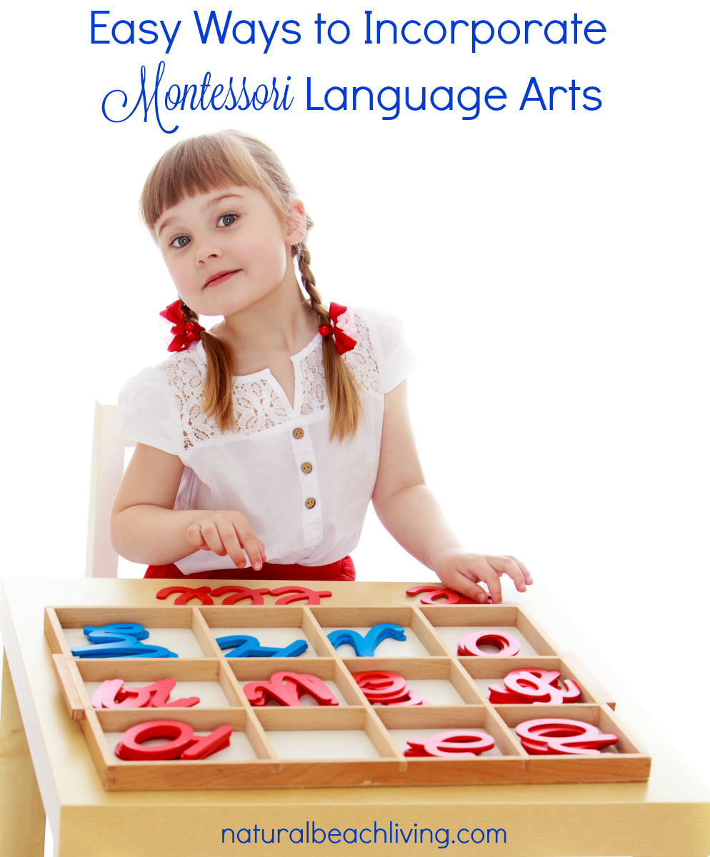 Easy Ways to Use Montessori Language Arts, 3 part Cards, Hands on learning, Printables, Montessori Activities, Pre-Reading & Writing skills, Early Language
