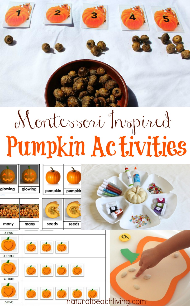 Fall Montessori Pumpkin Activities